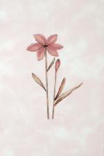 Керамическая плитка Газкерамик Декор Валентино Цветы розовый