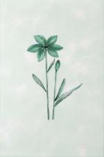 Керамическая плитка Газкерамик Декор Валентино Цветы зеленый