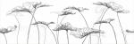 Керамическая плитка Meissen Декор-вставка Elegance цветы белый EG2U052