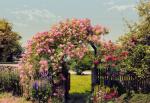 Обои Komar 8-936 Rose Garden