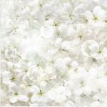 Стеновые панели Кухонные фартуки Весна 350301-00