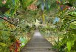 Обои Komar 8-977 Wild Bridge
