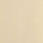 Керамогранит Евро-Керамика Матовый 10GCR0006 Ректификат