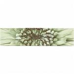 Керамическая плитка Golden Tile Зебрано Фриз зеленый