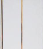 Стеновые панели ПВХ 2 полосы золото