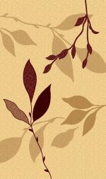 Ковры ТАТ Brilliant Collection 0702 beige-cream