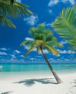 Обои Komar 4-883 Ari Atoll