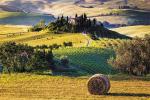 Стеновые панели Кухонные фартуки Тоскана 020201-00