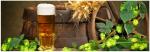Стеновые панели Кухонные фартуки Хмель