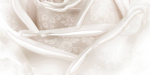 Керамическая плитка Belleza Декор Нежность бежевый В