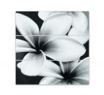 Керамическая плитка Mei Стеклянное панно Flower grey O-PRP-WPU092D