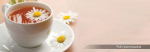Стеновые панели Кухонные фартуки Кухонный фартук Чай ромашка
