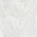 Стеновые панели ПВХ Белый лопес