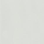 Линолеум Мармолеум 107-059 frost grey