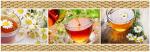 Стеновые панели Кухонные фартуки Ромашковый чай