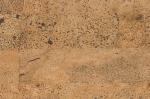 Пробковые полы Настенные пробковые покрытия Granorte Element Rustic Brown