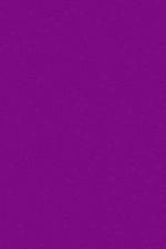 Ковры Merinos s600 Purple Овал