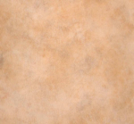 Линолеум Graboplast 4558-451